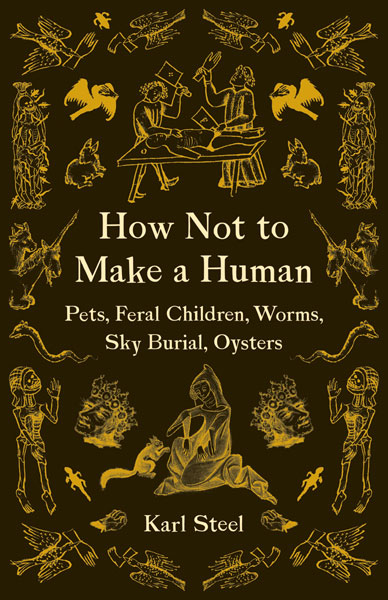 the cover of How Not to Make a Human